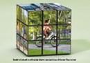 Pedala Senza Pensieri con le nuove biciclette elettriche a marchio Enel Green Power