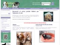 Nuovo forum per gli amanti dei cani sul portale Adottare Cani