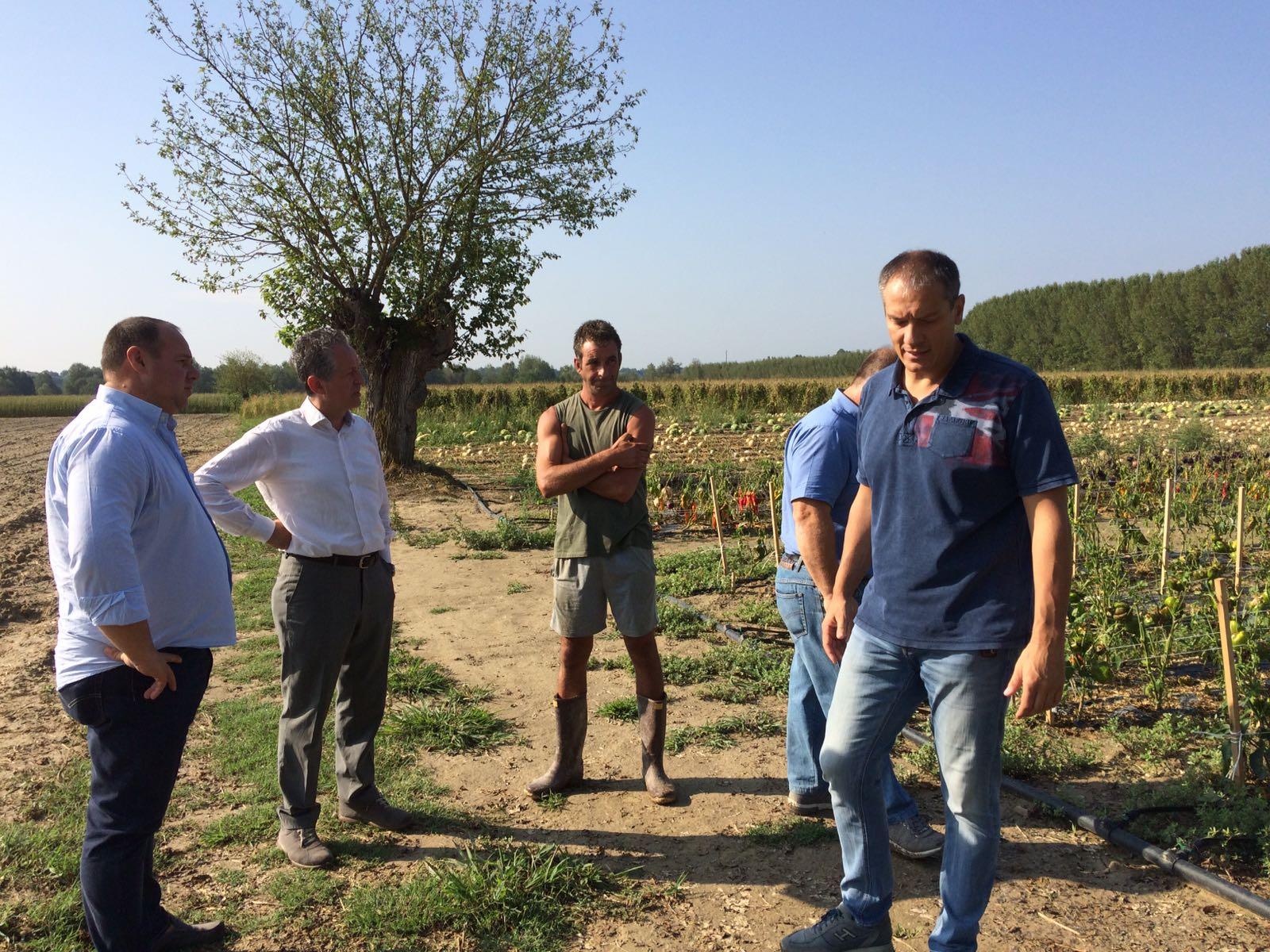 Grandine ad Alessandria: sopralluogo con Assessore regionale Regione Piemonte Giorgio Ferrero